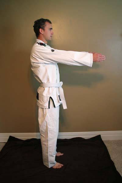 Tatami Estilo 3.0 gi review-fit