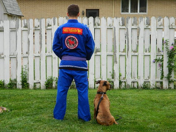 bull-terrier-new-star-gi-review-back