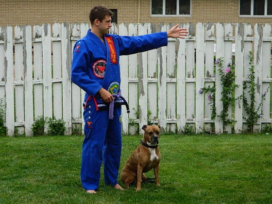 bull-terrier-new-star-gi-review-sleeve-length