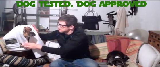 dog tested